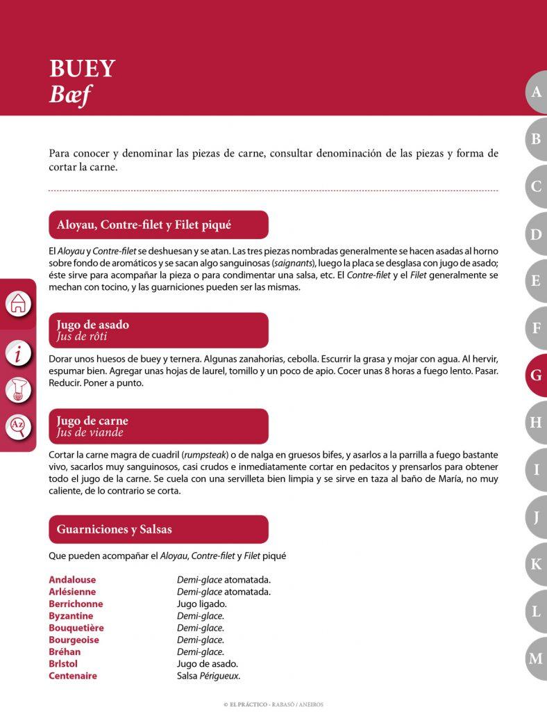 El PRACTICO 1.0 - Edición Digital eBook - G - Entradas fuertes